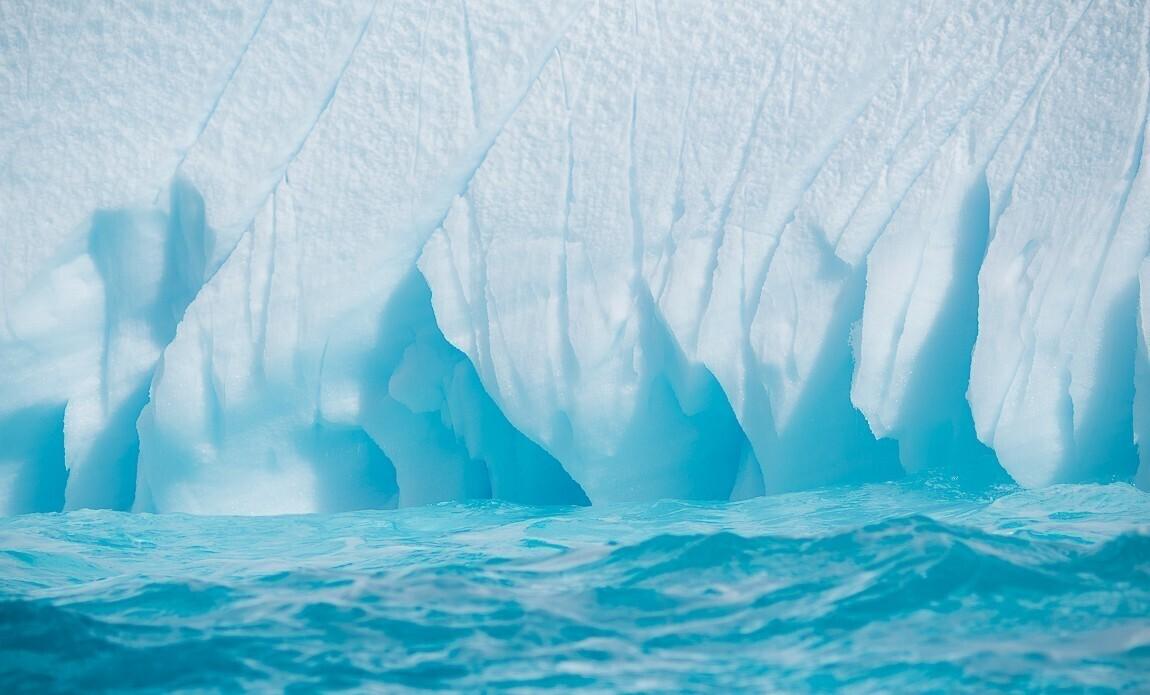 expedition photo antarctique benoist clouet galerie 2