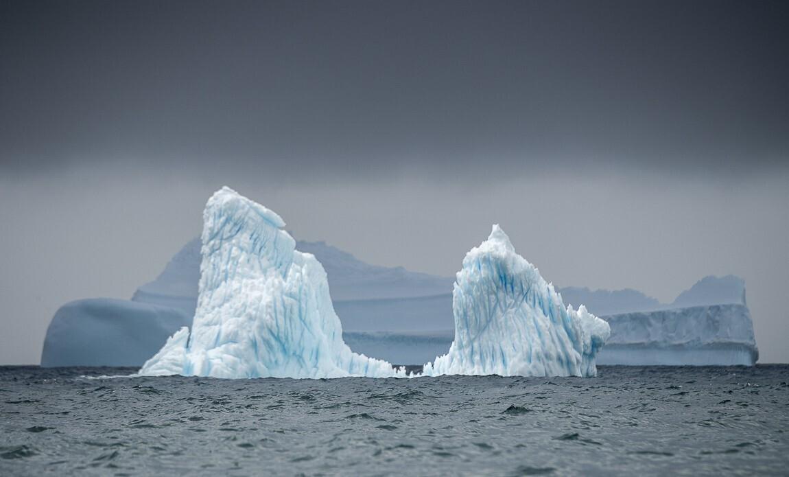 expedition photo antarctique benoist clouet galerie 7