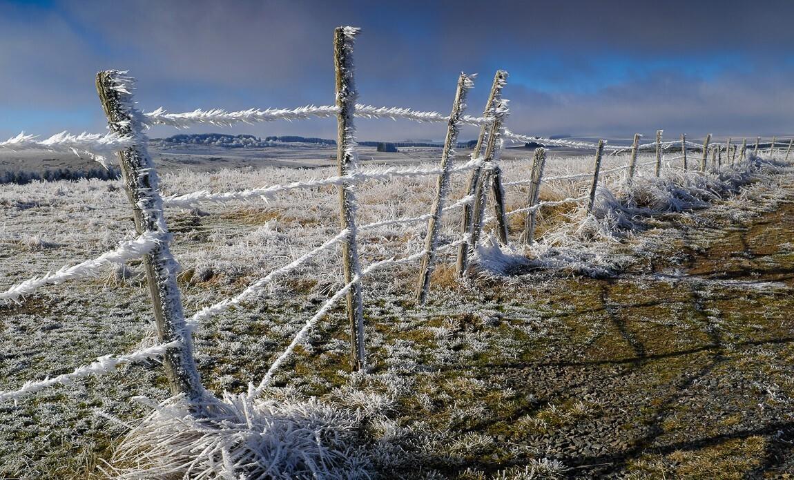 voyage photo aubrac hiver jean luc girod galerie 3