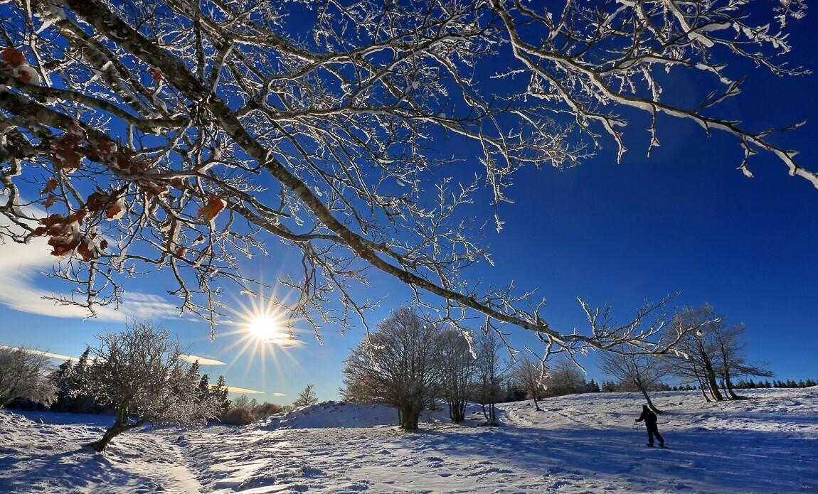 voyage photo aubrac hiver jean luc girod galerie 8
