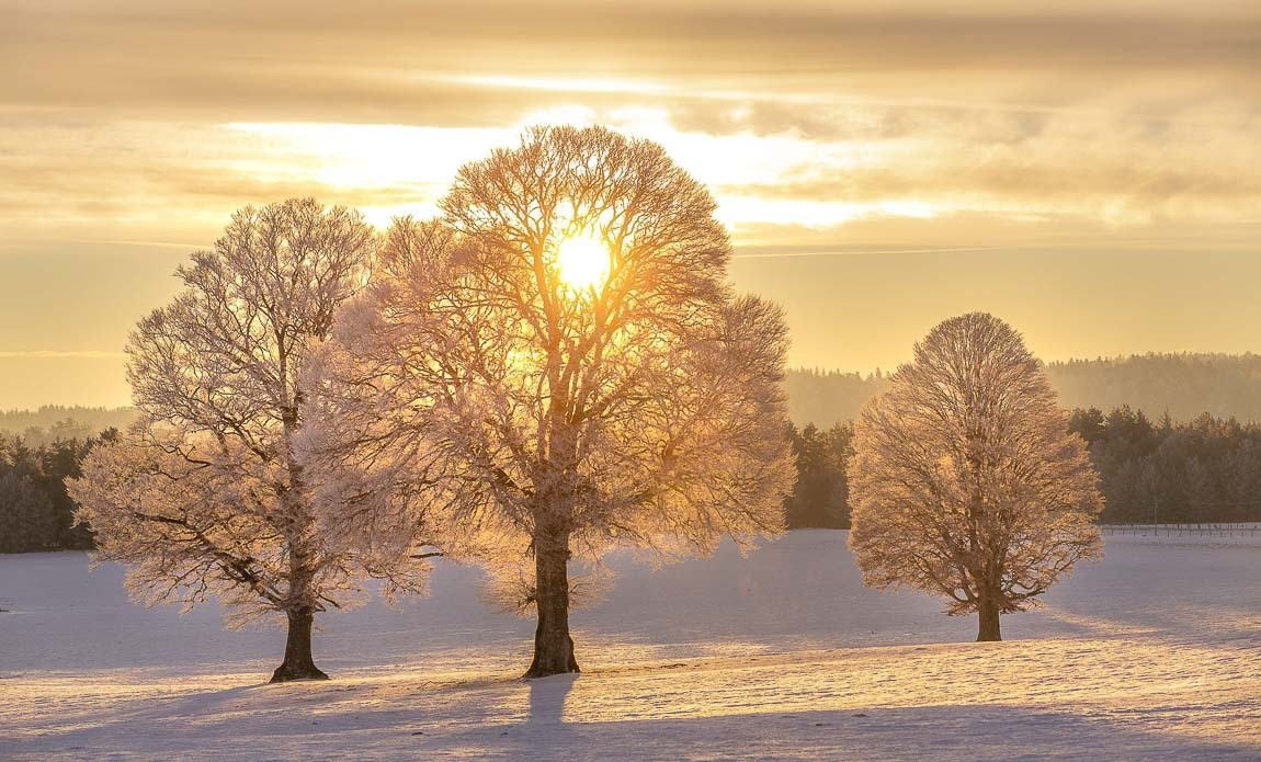 voyage photo aubrac hiver lionel montico galerie 1