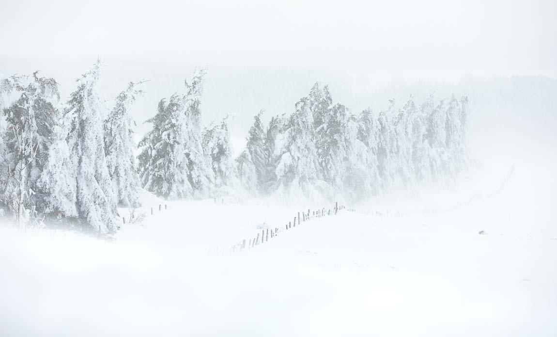 voyage photo aubrac hiver lionel montico galerie 3