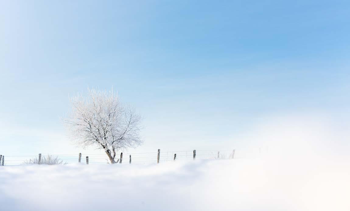 voyage photo aubrac hiver lionel montico galerie 7