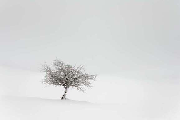 voyage photo aubrac hiver lionel montico promo dep 19
