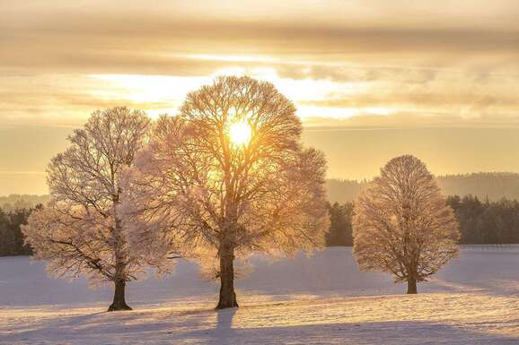 voyage photo aubrac hiver lionel montico promo dep 22