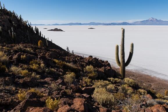 voyage photo bolivie chili printemps axel coeuret promo 2 jpg
