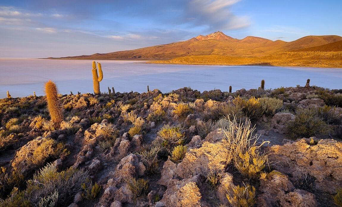voyage photo bolivie printemps jean michel lenoir galerie 15