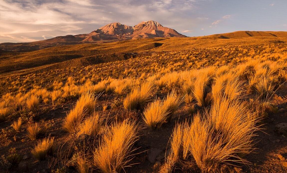 voyage photo bolivie printemps jean michel lenoir galerie 16