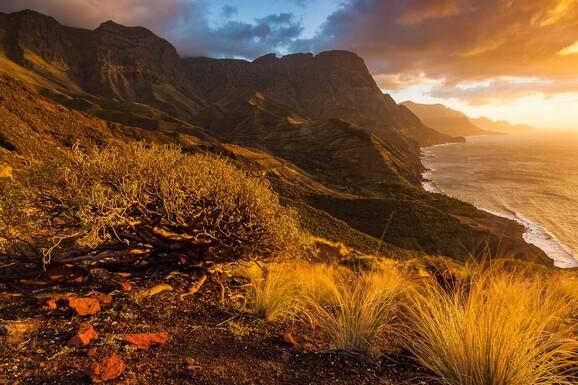 voyage photo canaries lionel montico promo 5 jpg