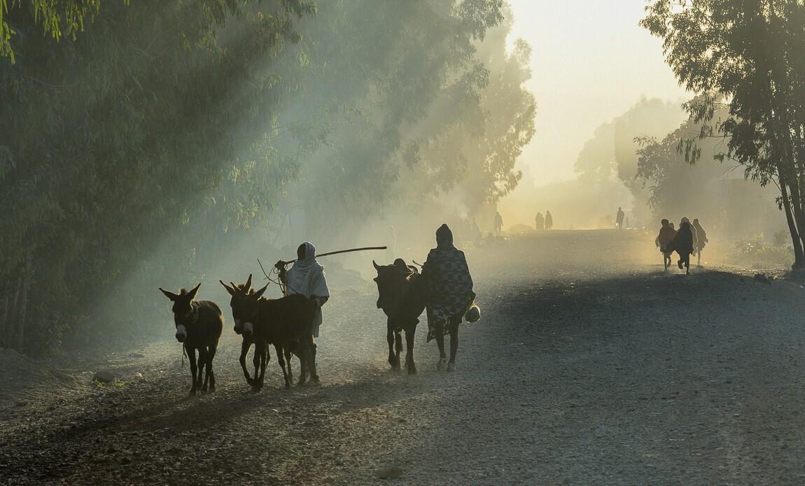 voyage photo ethiopie meskel christophe boisvieux galerie 11
