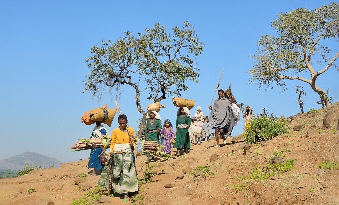 voyage photo ethiopie meskel christophe boisvieux galerie 25
