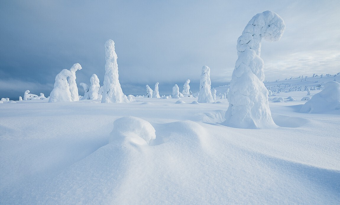 voyage photo finlande jean michel lenoir galerie 1