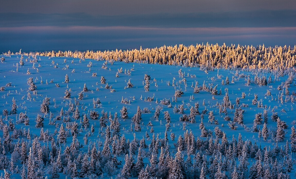 voyage photo finlande jean michel lenoir galerie 12