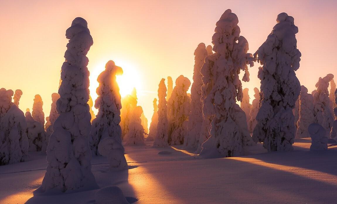 voyage photo finlande jean michel lenoir galerie 2