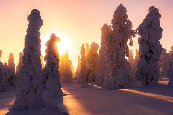 voyage photo finlande jean michel lenoir promo 13