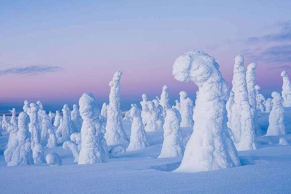 voyage photo finlande jean michel lenoir promo 2