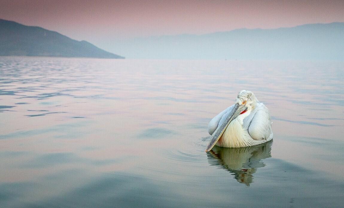 voyage photo grece lionel montico galerie 5