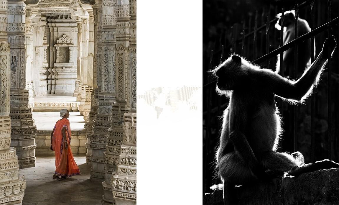 voyage photo inde rajasthan axel coeuret galerie 11