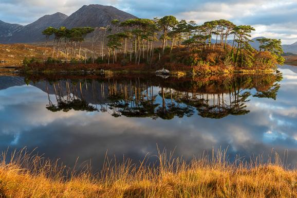 voyage photo irlande automne gregory gerault promo 1 jpg