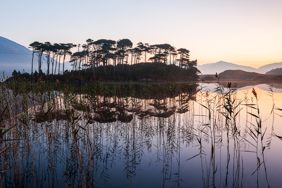 voyage photo irlande automne gregory gerault promo 2 jpg