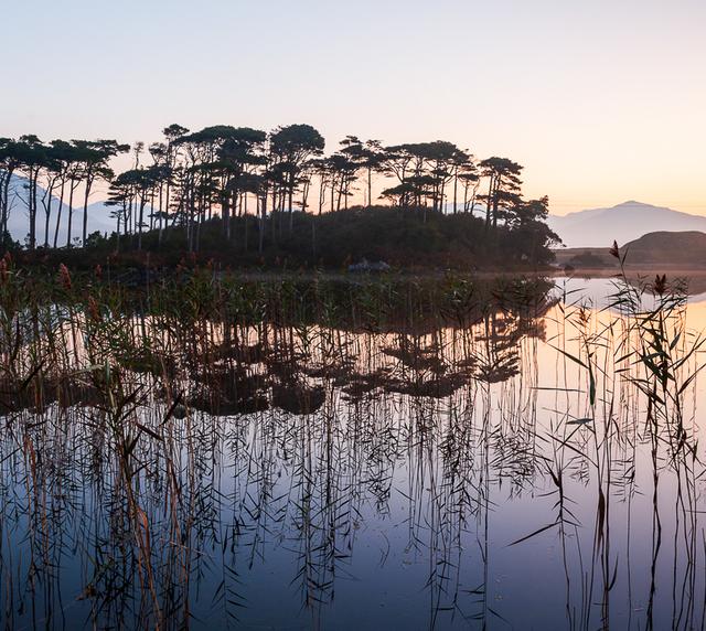 voyage photo irlande automne gregory gerault promo gen 1 jpg