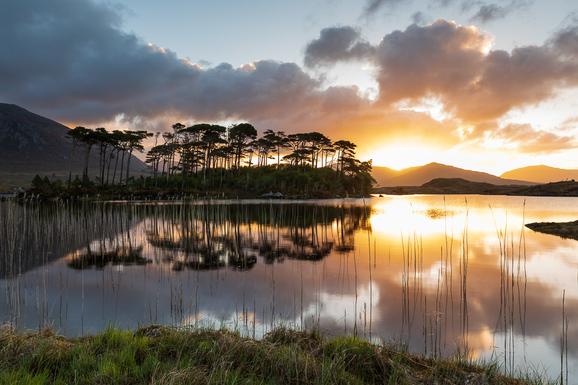 voyage photo irlande printemps gregory gerault promo 4 jpg
