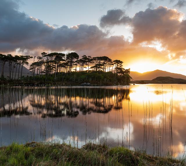 voyage photo irlande printemps gregory gerault promo gen 1 jpg