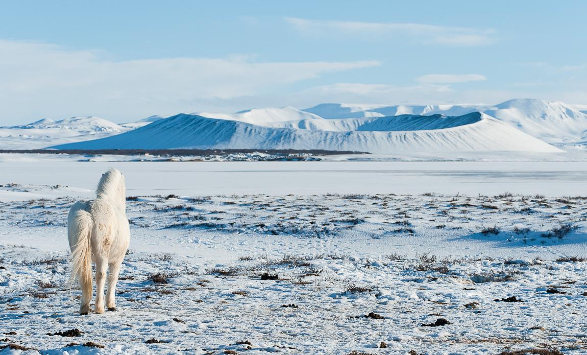 voyage photo islande nord hiver gregory gerault galerie 2