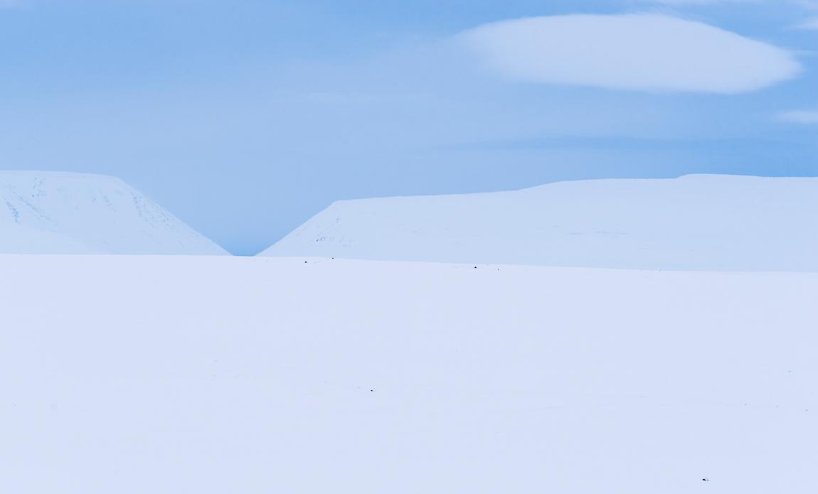voyage photo islande nord hiver gregory gerault galerie 7