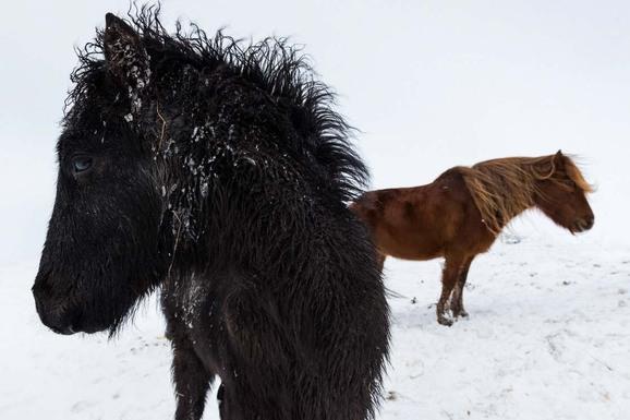 voyage photo islande nord hiver gregory gerault promo 17
