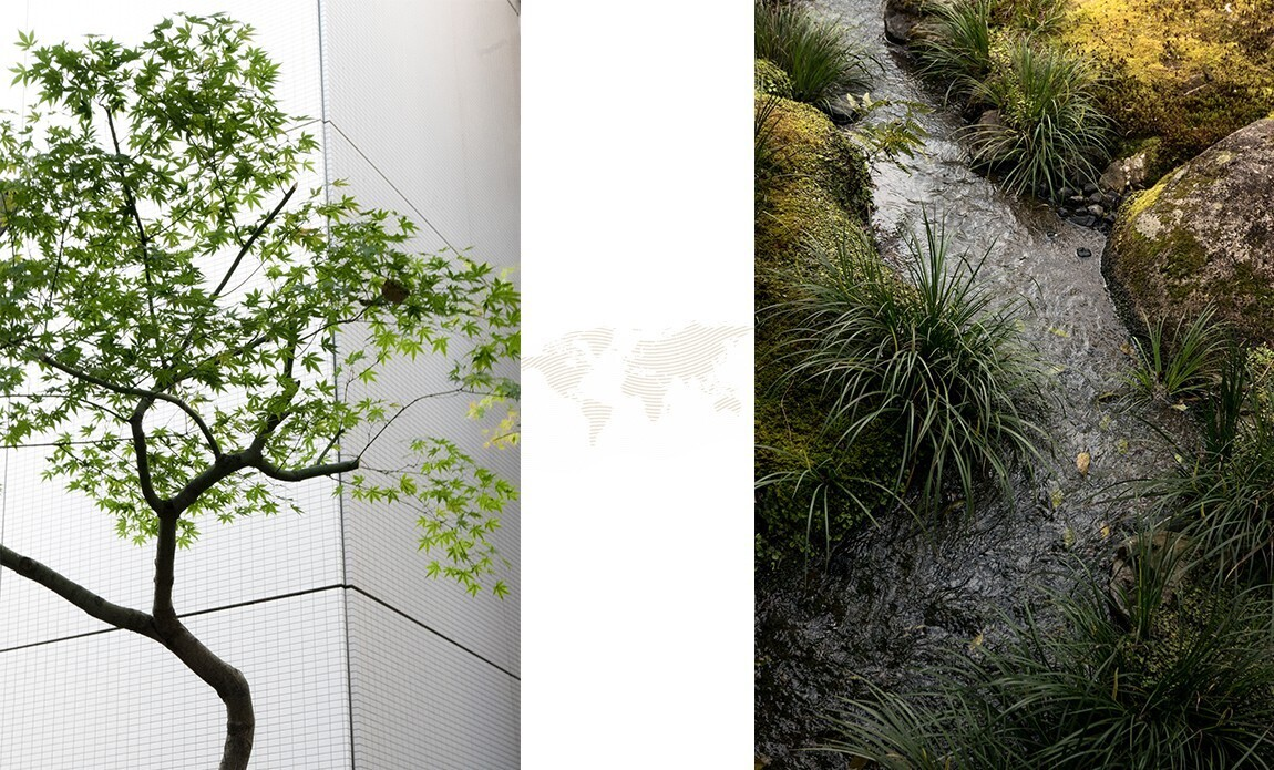voyage photo japon printemps regis defurnaux galerie 10