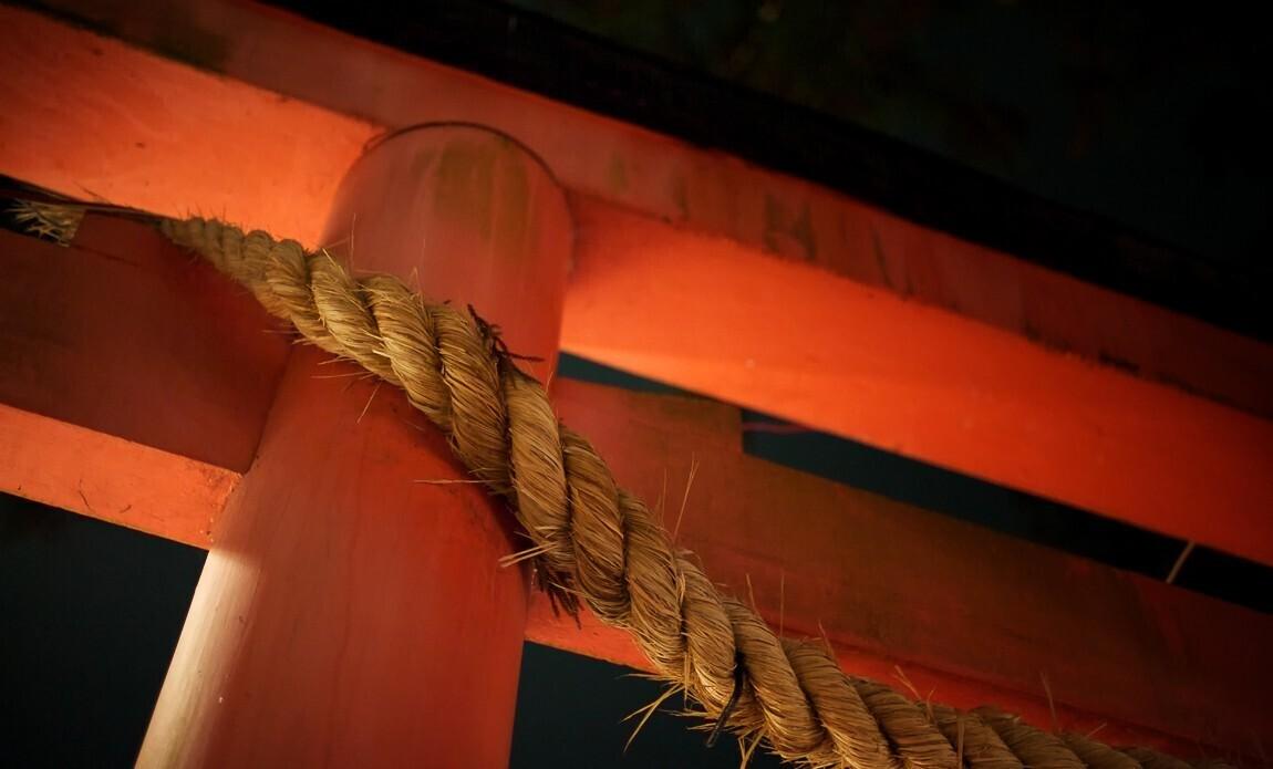 voyage photo japon printemps regis defurnaux galerie 21