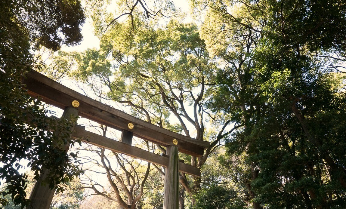 voyage photo japon printemps regis defurnaux galerie 8