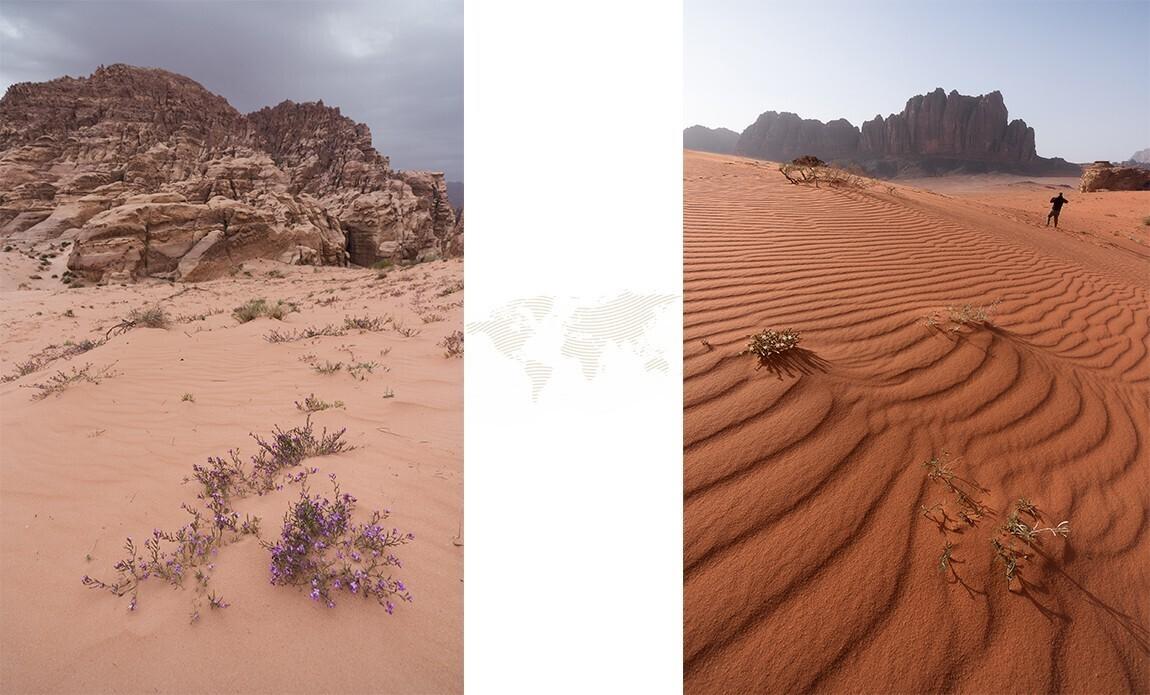 voyage photo jordanie thibaut marot galerie 2