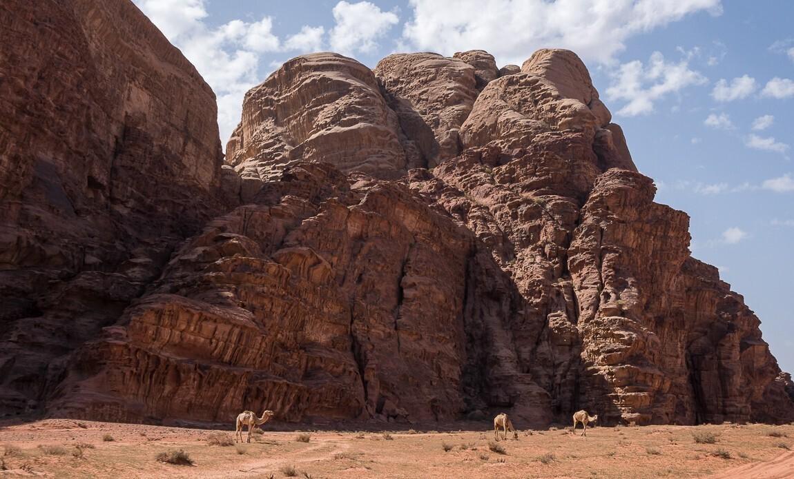 voyage photo jordanie thibaut marot galerie 5