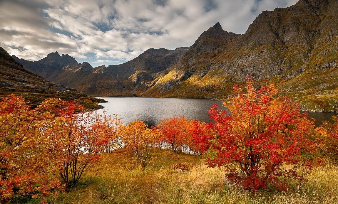 voyage photo lofoten automne jean michel lenoir galerie 7