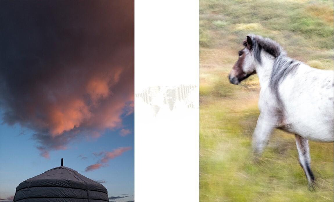 voyage photo mongolie regis defurnaux galerie 3