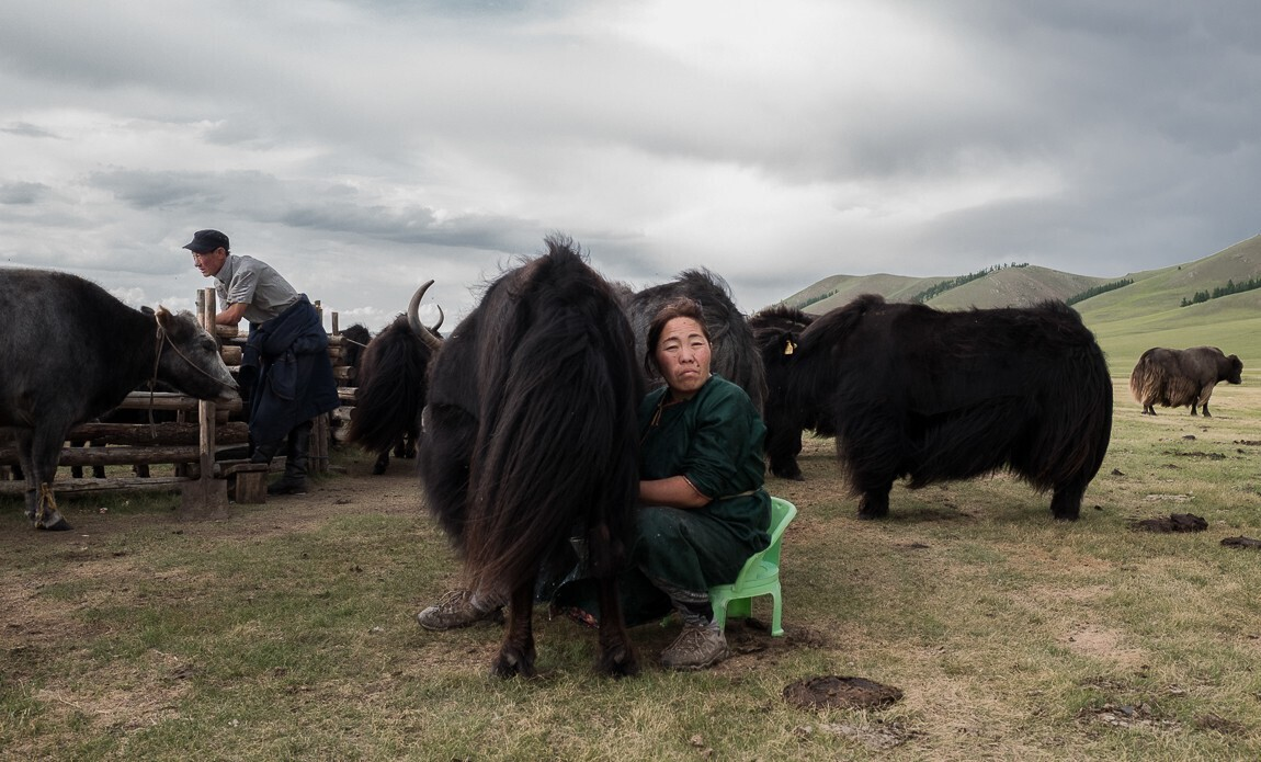 voyage photo mongolie regis defurnaux galerie 9