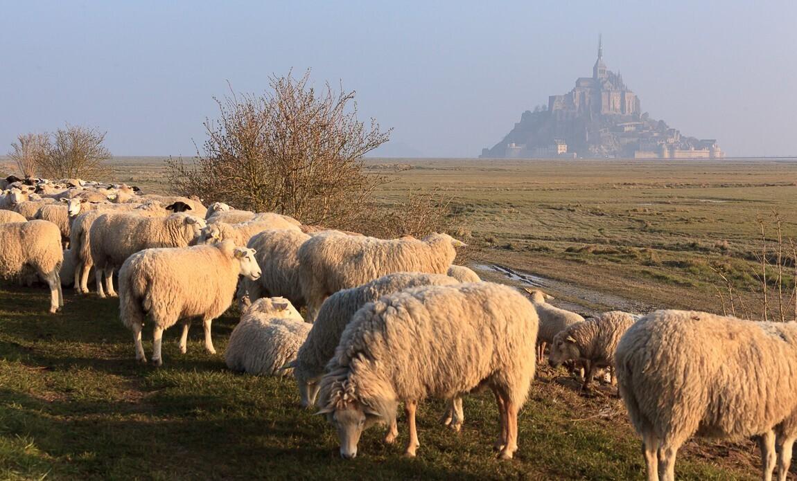 voyage photo mont saint michel grandes marees vincent frances galerie 34