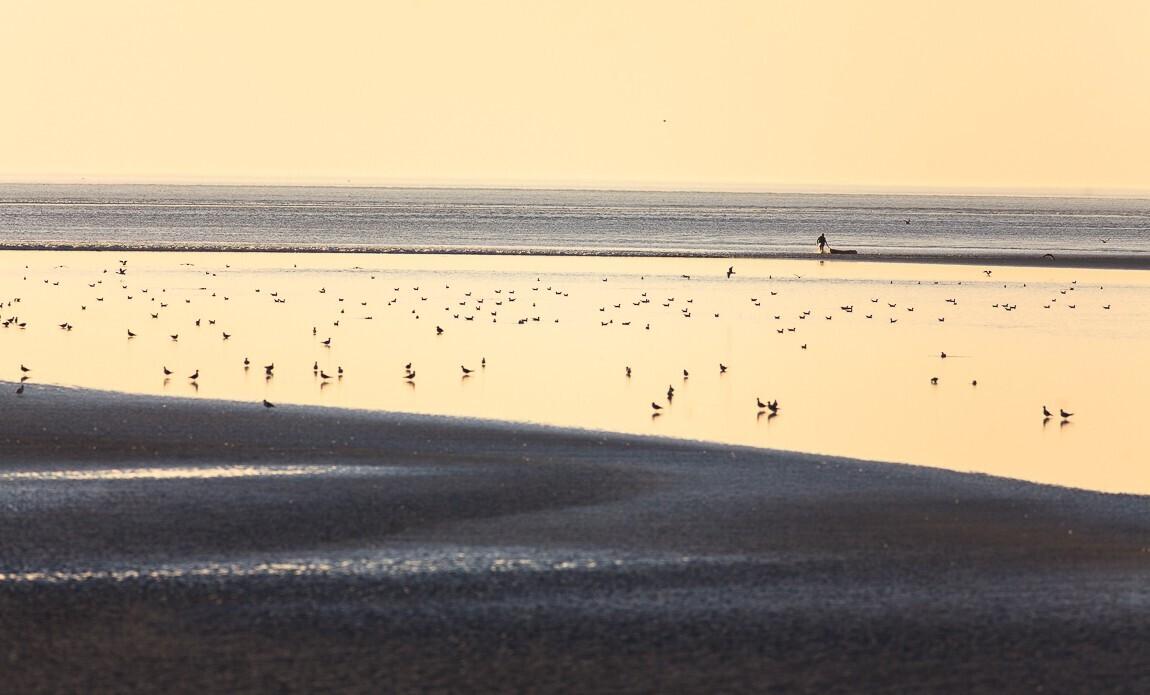 voyage photo mont saint michel grandes marees vincent frances galerie 42