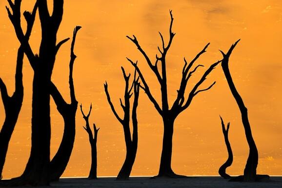 voyage photo namibie hiver austral mathieu pujol promo 1 jpg