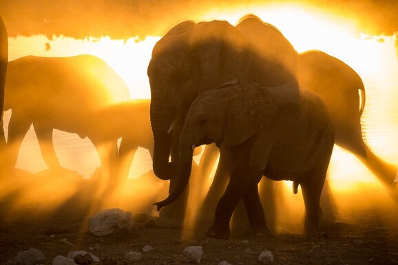 voyage photo namibie hiver austral mathieu pujol promo 3 jpg