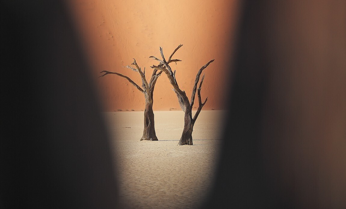 voyage photo namibie vincent frances galerie 5