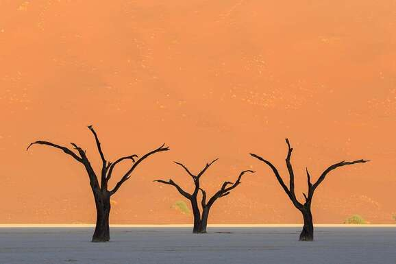 voyage photo namibie vincent frances promo 1
