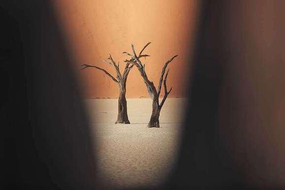 voyage photo namibie vincent frances promo 12