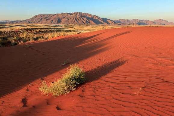 voyage photo namibie vincent frances promo 19