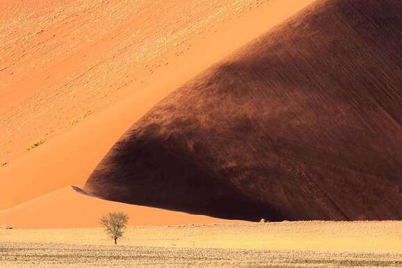 voyage photo namibie vincent frances promo 3
