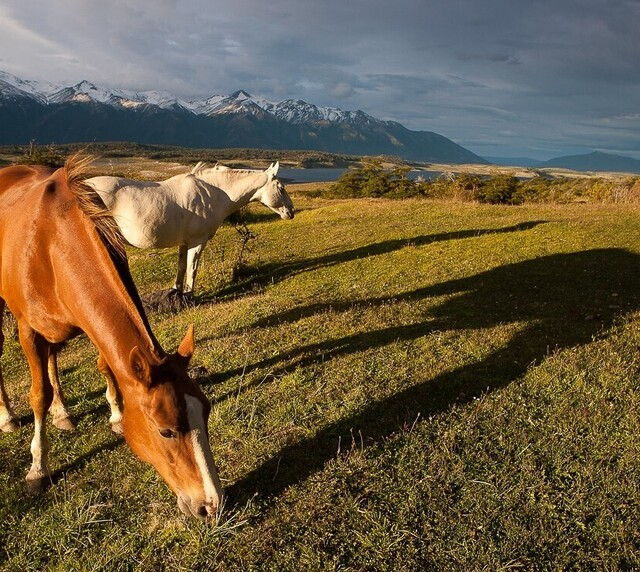 voyage photo patagonie patrick escudero promo depart 1
