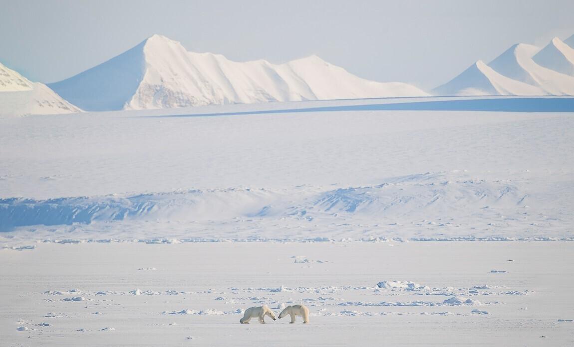 voyage photo spitzberg hiver benoist clouet galerie 36