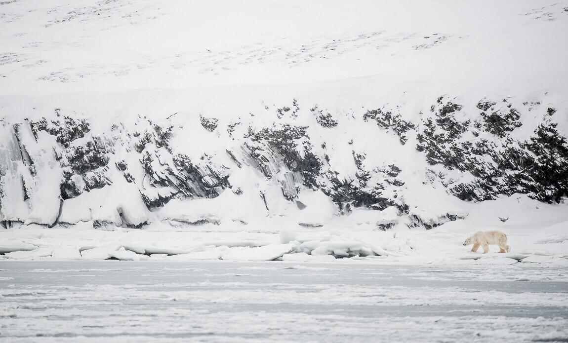 voyage photo spitzberg hiver benoist clouet galerie 5